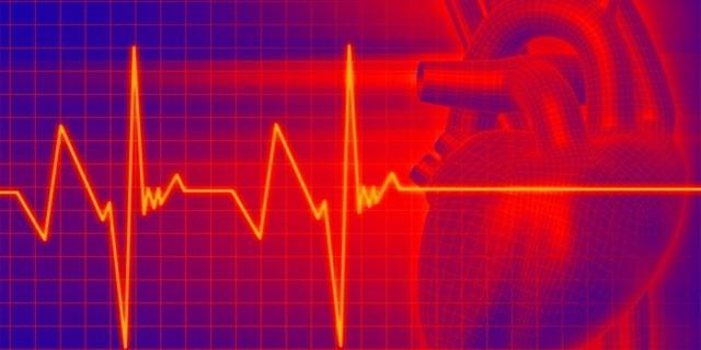 Анализ крови на креатинин: что это такое и каковы нормальные значения, как подготовиться