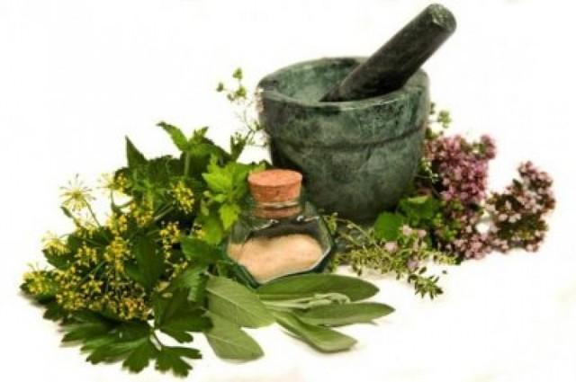 Как избавиться от вшей и гнид в домашних условиях за 1 день, эффективные средства от вшей и гнид