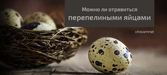 Отравления яйцами: симптомы, что делать если отравился яйцами