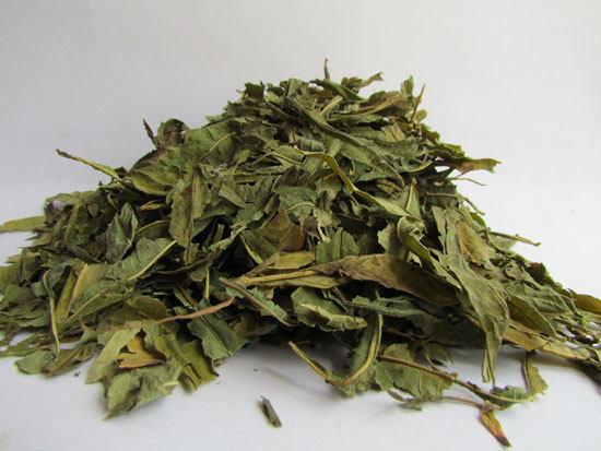 Ivan tea készítési módszer prosztatitisz kezelésére