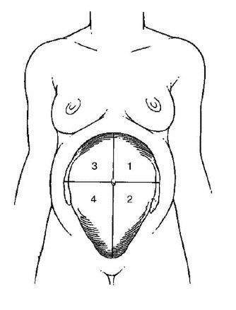 Маловодие при беременности, причины, последствия и лечение