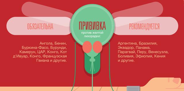 Прививки для выезда за границу: какие прививки делать туристам | ОкейДок