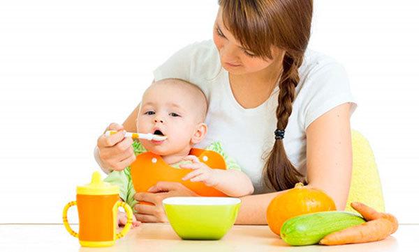 Польза и вред цукини для организма, состав, пищевая ценность, способы приготовления