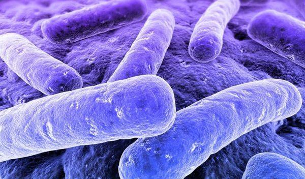 Микоплазма Гениталиум: что это, виды урогенитальных микст инфекций, лечение микст инфекций вызванных m. genitalium